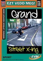 freddyD: Grand Street X-ing / Scooter Pro