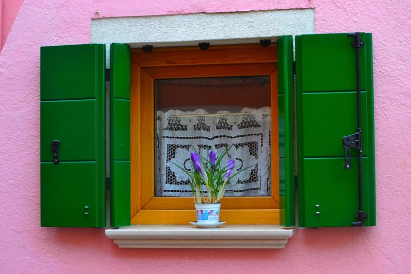 virág a falhoz